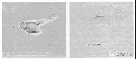 图3 扫描电镜下的硅酸盐和硫化锰夹杂