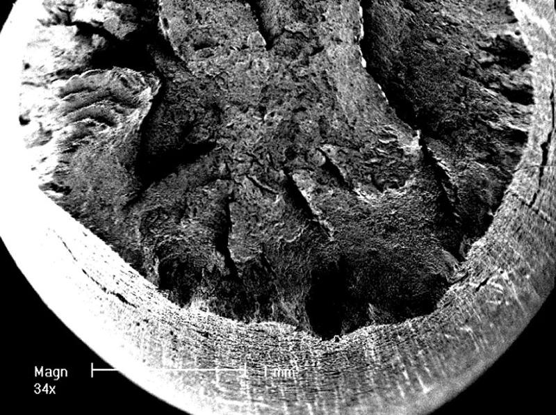 钢材显微镜图